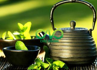 Dịch vụ công bố chất lượng trà xanh, trà khô