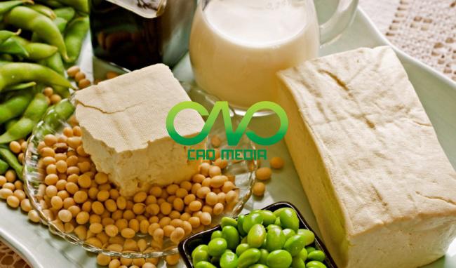 Công bố tiêu chuẩn sản phẩm sữa đậu nành