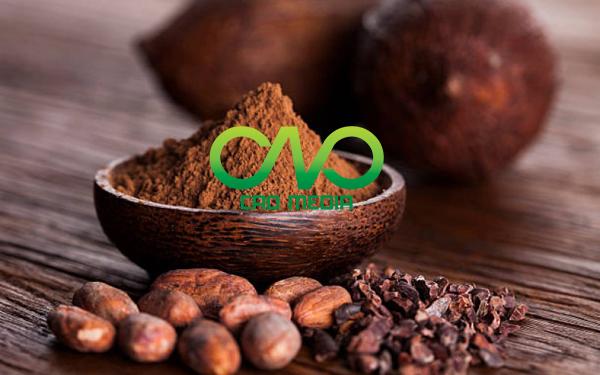 Công bố tiêu chuẩn chất lượng sản phẩm Cacao