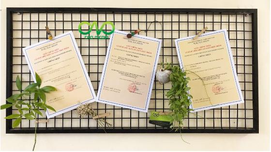 Dịch vụ xin giấy phép an toàn thực phẩm nhà hàng chay tại tp.hcm
